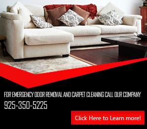 Carpet Cleaning Moraga, CA | 925-350-5225 | Best Service
